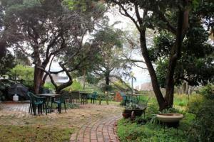 Armagh garden